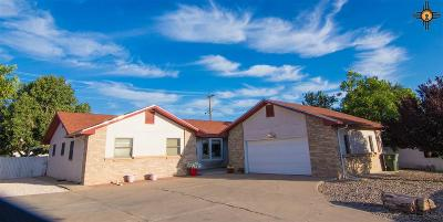 Gallup Single Family Home Active, U/C-Take Back Ups: 1314 Red Rock