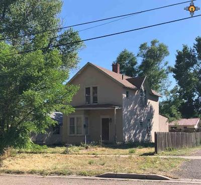 Single Family Home For Sale: 315 Ninth Street