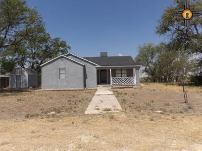 Lovington Single Family Home For Sale: 4002 S Gill