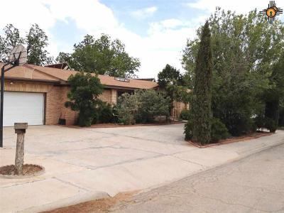 Jal NM Single Family Home For Sale: $200,000