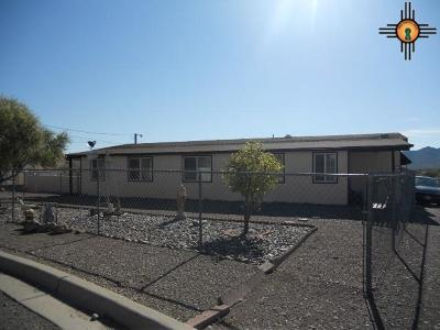 Truth Or Consequences NM Manufactured Home For Sale: $83,500