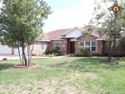 Single Family Home For Sale: 4001 Springwood Dr