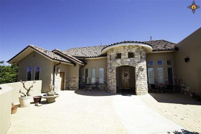 Gallup Single Family Home For Sale: 11 Catalpa Canyon Road