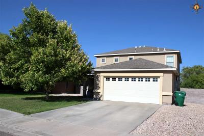 Hobbs Single Family Home For Sale: 2518 N Green Valley Trail