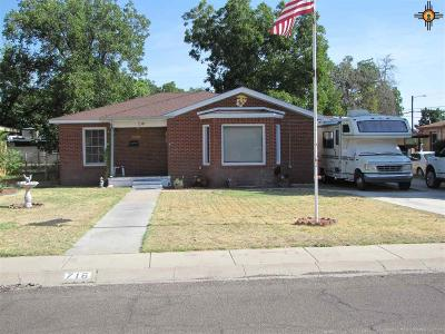 Hobbs Single Family Home For Sale: 716 E Yucca Dr.