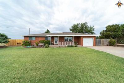 Portales Single Family Home For Sale: 522 Nm 88