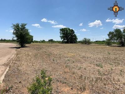 Portales Residential Lots & Land For Sale: Leo Drive
