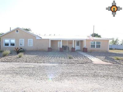 Portales Single Family Home For Sale: 1191 S Roosevelt Rd 10