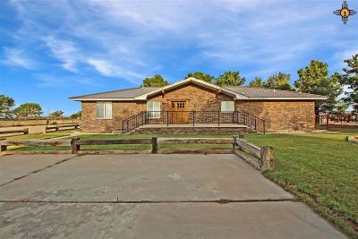 Hobbs Single Family Home For Sale: 6825 S Eunice Highway