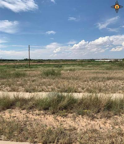 Residential Lots & Land For Sale: Lot 8 Tampico