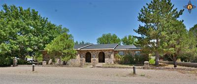 Portales Single Family Home For Sale: 2113 2nd