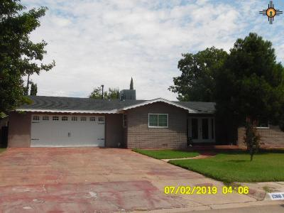 Carlsbad Single Family Home For Sale: 1208 W Ural Drive