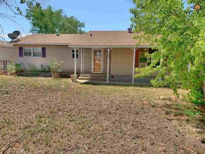 Portales Single Family Home For Sale: 302 E Spruce