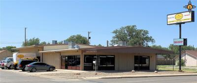 Curry County Commercial For Sale: 600 N Prince Street