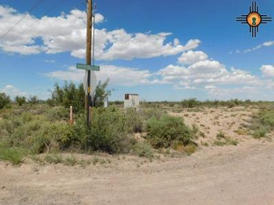 Residential Lots & Land For Sale: Tapia Rd SE
