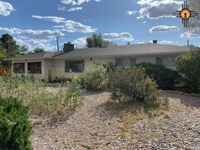 Gallup Single Family Home For Sale: 1502 Helena Drive