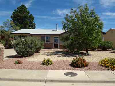 Alamogordo NM Single Family Home For Sale: $88,500