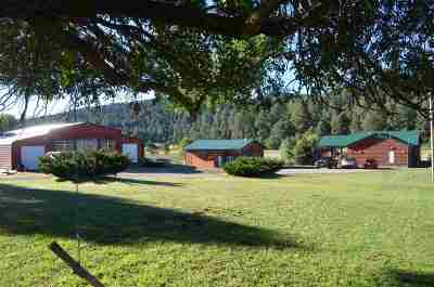 Mayhill Single Family Home For Sale: 2536 Us Hwy 82