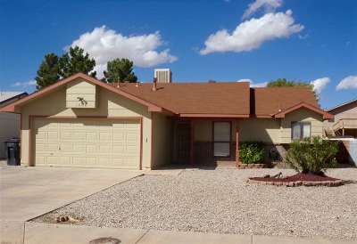 Alamogordo NM Single Family Home For Sale: $108,700