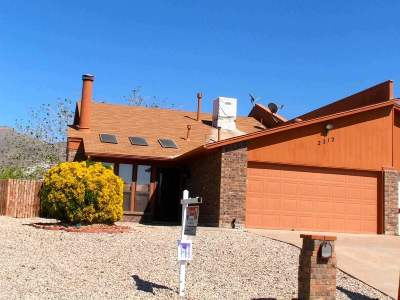 Alamogordo NM Single Family Home For Sale: $99,700