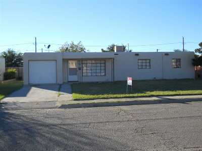 Alamogordo NM Single Family Home For Sale: $74,700