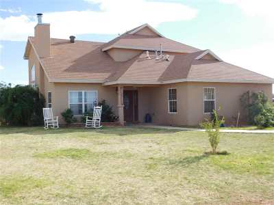 Tularosa Single Family Home For Sale: 91 NW Bookout Rd