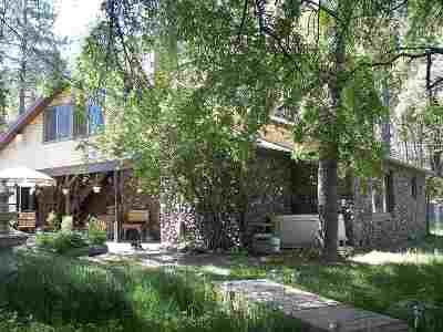 High Rolls Mountain Park Single Family Home For Sale: 174 Haynes Canyon Rd