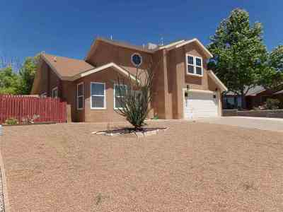 Alamogordo NM Single Family Home For Sale: $144,000