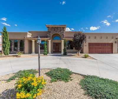 Alamogordo Single Family Home For Sale: 508 Desert Lakes Rd