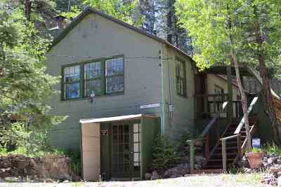Cloudcroft Single Family Home For Sale: 707 Grand Blvd