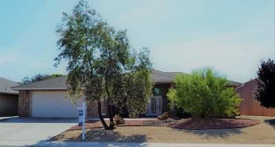 Alamogordo Single Family Home For Sale: 2071 Calle Del Sol