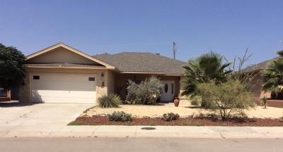 Alamogordo Single Family Home For Sale: 307 Palo Duro