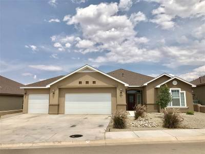 Alamogordo Single Family Home For Sale: 815 Shiprock