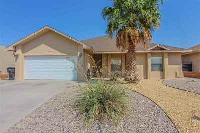 Alamogordo Single Family Home For Sale: 941 Hermoso El Sol