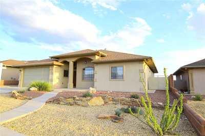 Alamogordo Single Family Home For Sale: 272 Bosque