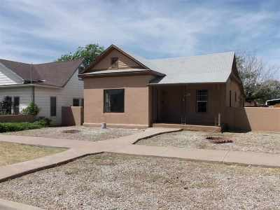 Alamogordo Single Family Home For Sale: 1113 Vermont Av