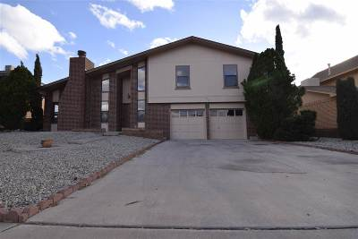 Alamogordo Single Family Home For Sale: 208 Cottonwood Dr