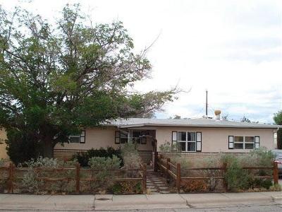 Alamogordo Single Family Home For Sale: 2705 Pontiac Dr