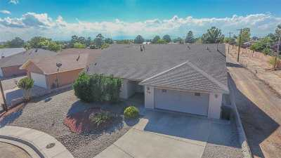 Alamogordo Single Family Home For Sale: 3455 Robert H Bradley Dr