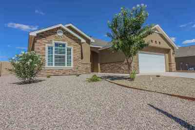 Alamogordo Single Family Home For Sale: 809 Shiprock