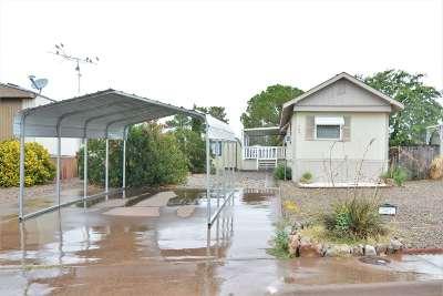 Alamogordo Single Family Home For Sale: 707 Dooley St