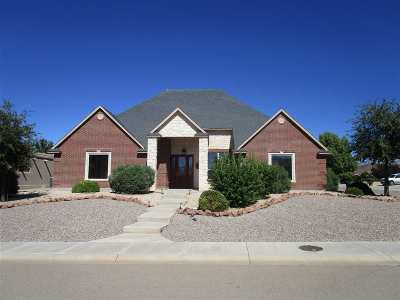 Alamogordo Single Family Home For Sale: 451 Cielo Grande