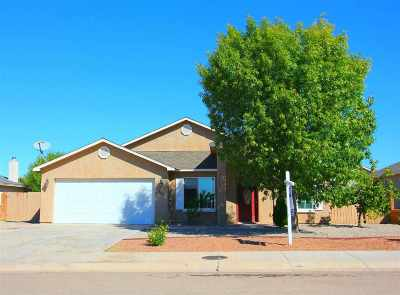 Alamogordo Single Family Home For Sale: 309 Bosque
