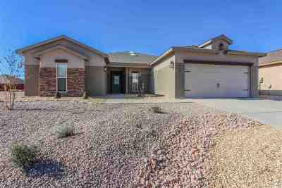 Alamogordo Single Family Home For Sale: 2707 Palo Pinto