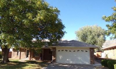 Alamogordo Single Family Home For Sale: 3207 Summer Av
