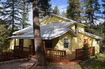 Cloudcroft Single Family Home For Sale: 201 Spring St