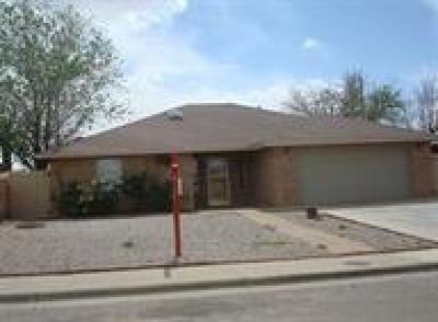 Alamogordo Single Family Home For Sale: 502 Venus Av