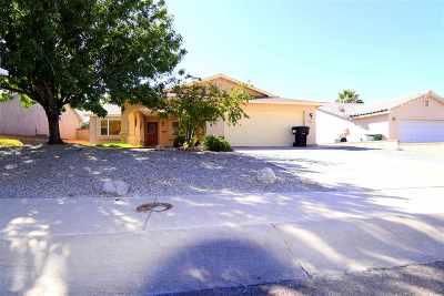 Alamogordo Single Family Home For Sale: 220 Kerry Av