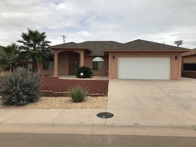 Alamogordo Single Family Home For Sale: 313 Palo Duro