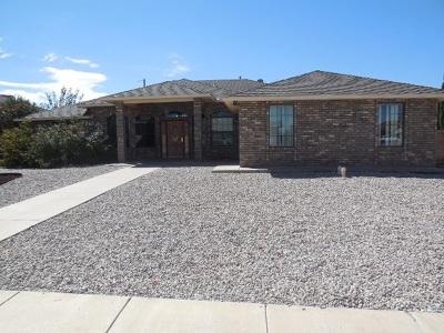 Alamogordo Single Family Home For Sale: 3504 Ironwood Dr